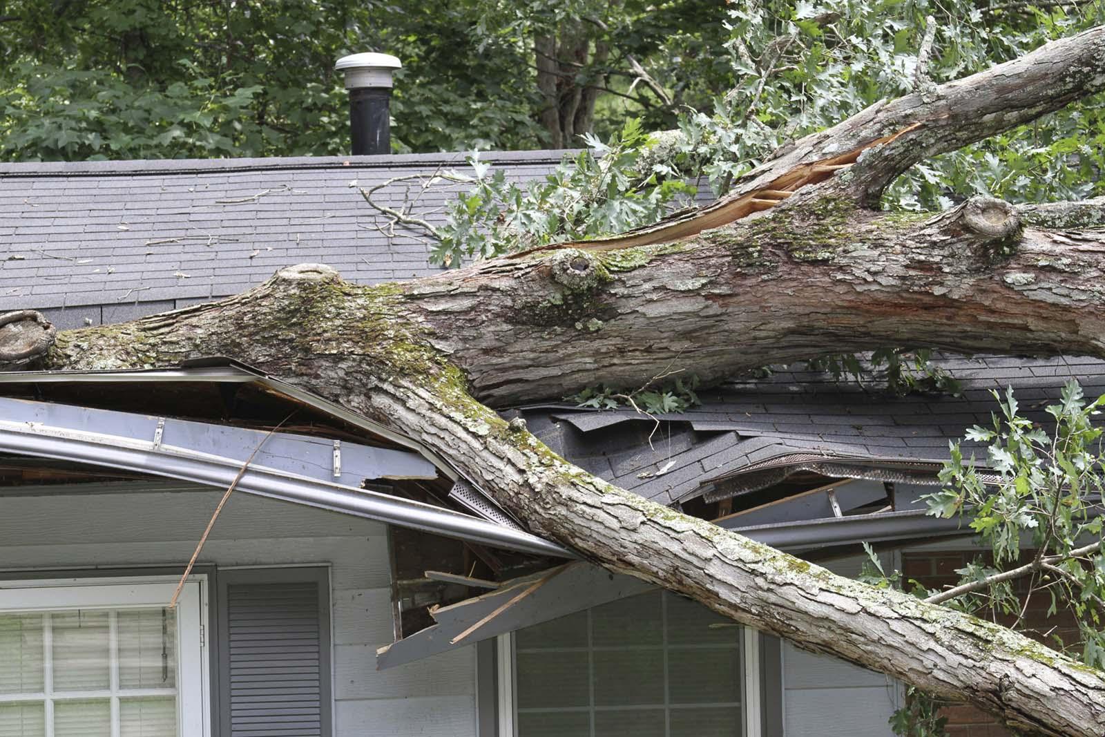 residential restoration in Raleigh, NC residential repair of storm & wind damage